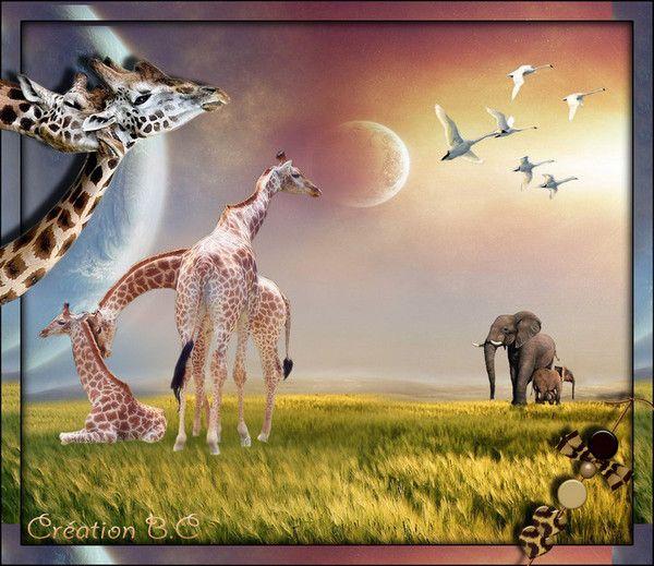 """Mi creación (2) con el tema de desafío """"Animal"""""""